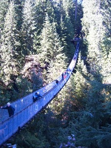 capilano bridge-1
