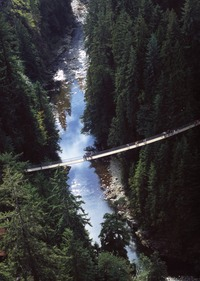 Aerial shot of Capilano Suspension Bridge
